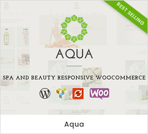 Aqua - Fitness - Gym & Yoga WordPress Theme