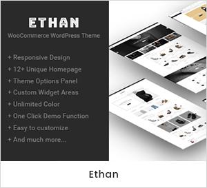 Ethan - Responsive WooCommerce WordPress Theme