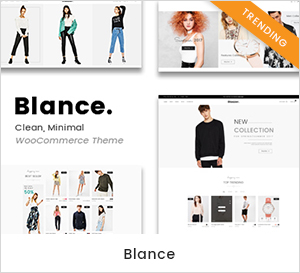 Blance Medicare - Medical & Health WordPress Theme theme WordPress
